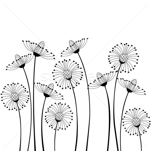meadow flowers Stock photo © odina222