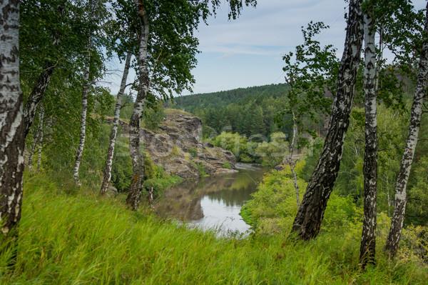 реке покрытый красивой деревья пейзаж дерево Сток-фото © oei1