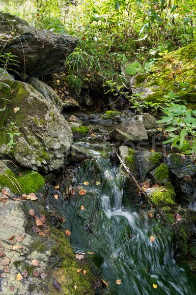 Dağ bahar taşlar kapalı yosun Stok fotoğraf © oei1