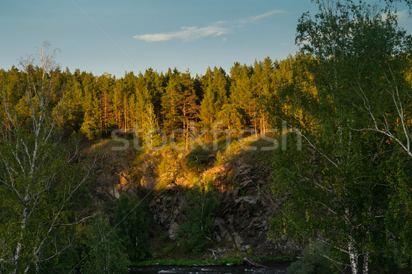 rocky shores of the river, covered with beautiful trees Stock photo © oei1