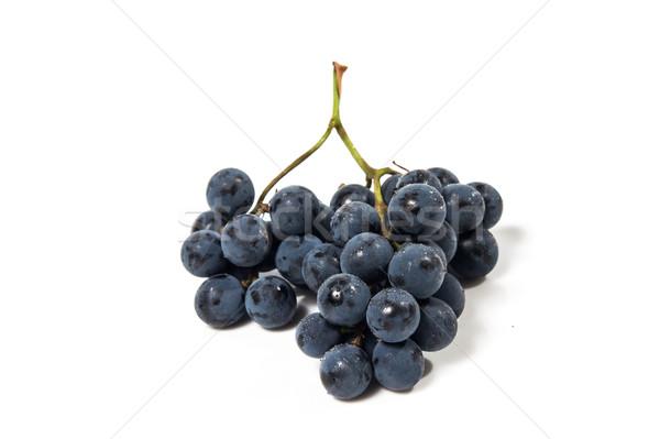 выстрел черный виноград изолированный Сток-фото © oei1