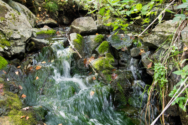 pure mountain spring flows among stones covered with moss Stock photo © oei1