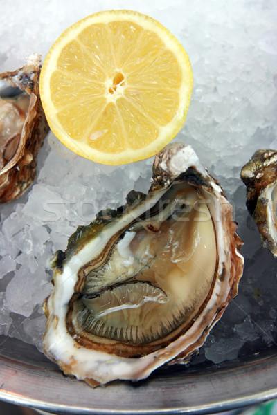 Сток-фото: льда · лимона · еды · холодно · морепродуктов