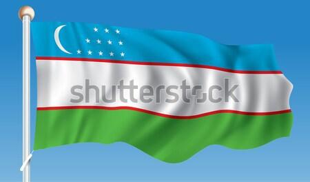 Banderą Gambia tekstury streszczenie tle Afryki Zdjęcia stock © ojal