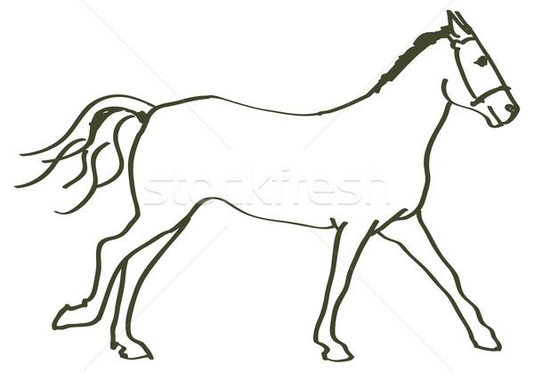 hand drawn horse Stock photo © ojal