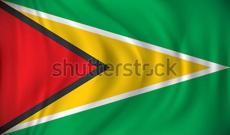 Vlag Guyana reizen wind land tekening Stockfoto © ojal
