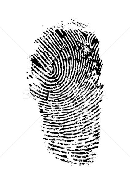 fingerprint Stock photo © ojal