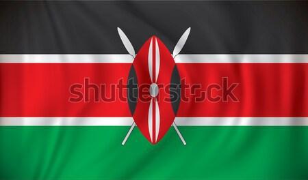 Zászló Kenya textúra világ utazás tó Stock fotó © ojal