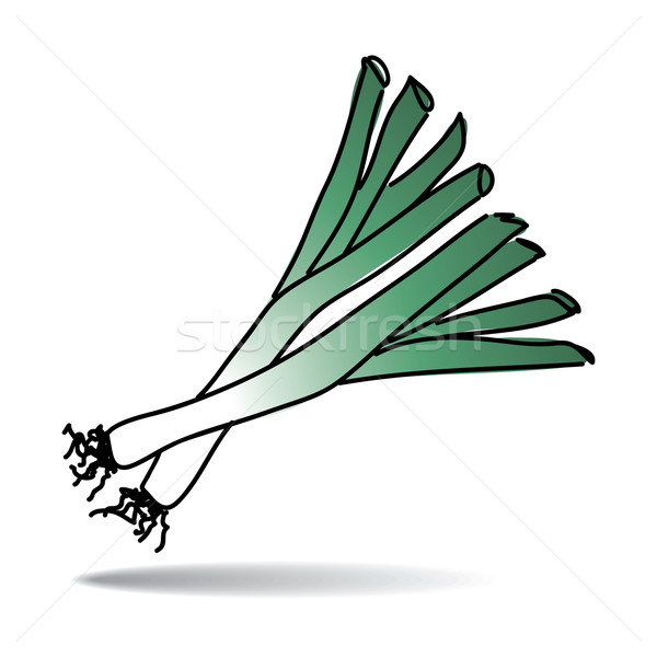 Freehand drawing leek icon Stock photo © ojal