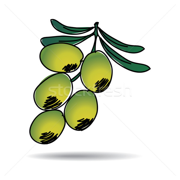 Freehand drawing olive icon Stock photo © ojal