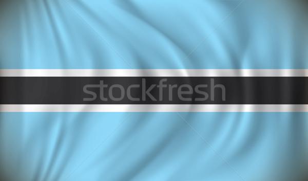 Zászló Botswana térkép terv diagram grafikus Stock fotó © ojal