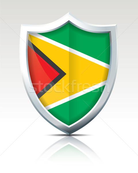 Scudo bandiera Guyana texture arte viaggio Foto d'archivio © ojal
