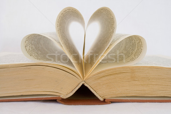 opened book Stock photo © ojal