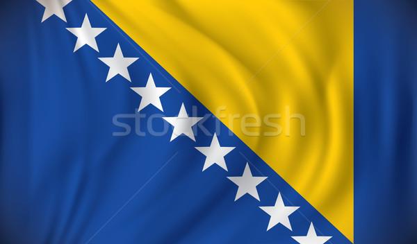 Bandera Bosnia Herzegovina ciudad mapa diseno mundo Foto stock © ojal
