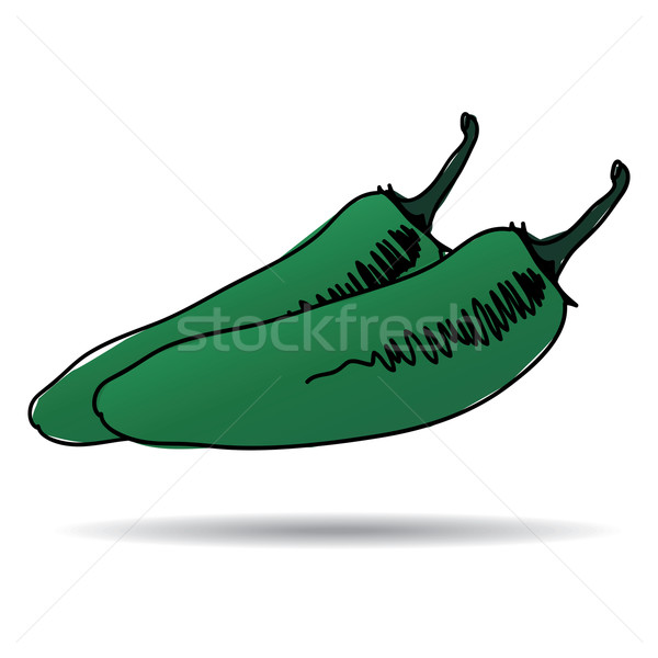Freehand drawing jalapeno icon Stock photo © ojal
