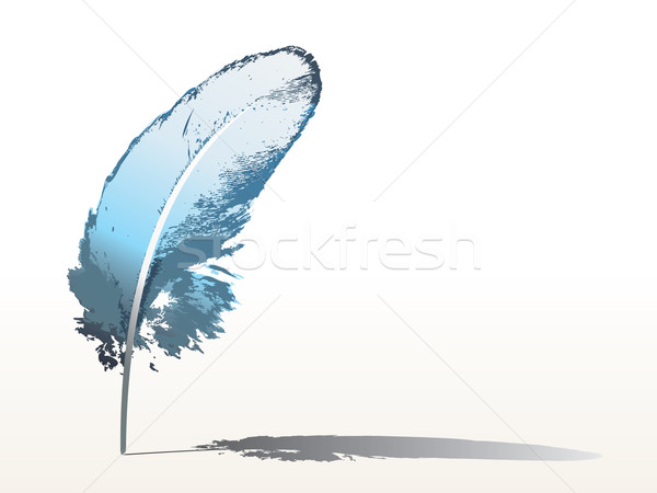 blue feather Stock photo © ojal