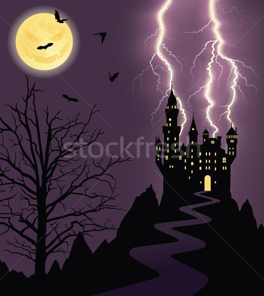 Ijesztő éjszaka telihold repülés sziluett kastély Stock fotó © oksanika