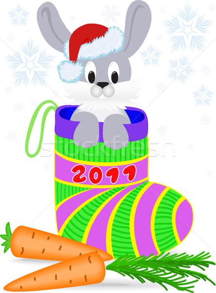 Nieuwe jaren konijn christmas cap Stockfoto © Oksvik