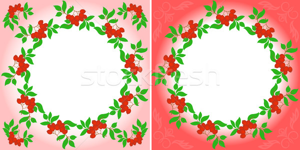 rowanberry Wreaths Stock photo © Oksvik