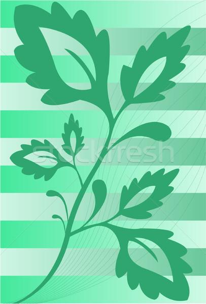 Bitki çizgili yeşil dal yaprakları eğim Stok fotoğraf © Oksvik