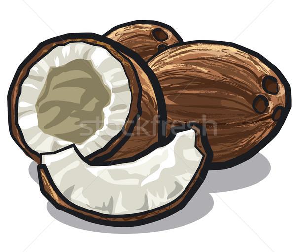 иллюстрация треснувший белый фрукты гайка Сток-фото © olegtoka