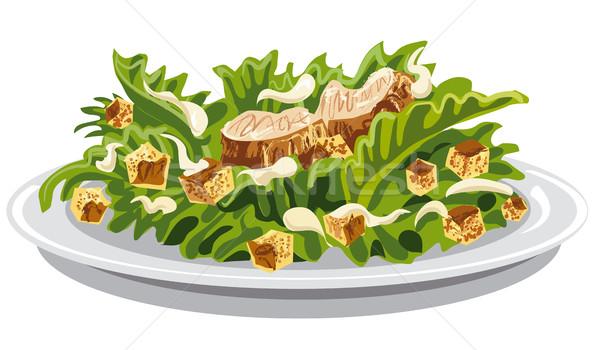 Салат Цезарь иллюстрация лист зеленый куриные Сток-фото © olegtoka