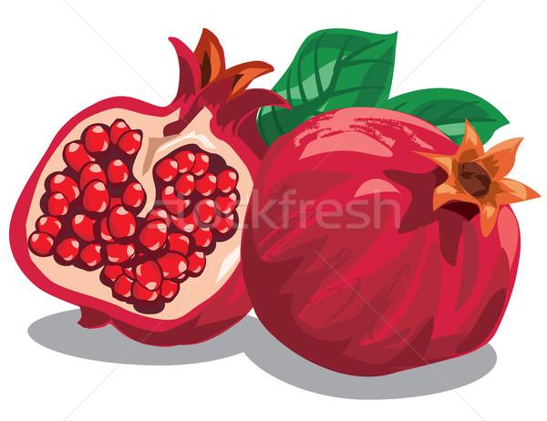 свежие зрелый иллюстрация продовольствие лист фрукты Сток-фото © olegtoka