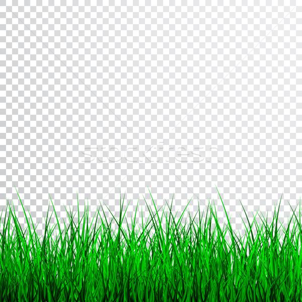 зеленая трава границе набор весны фон зеленый Сток-фото © olehsvetiukha
