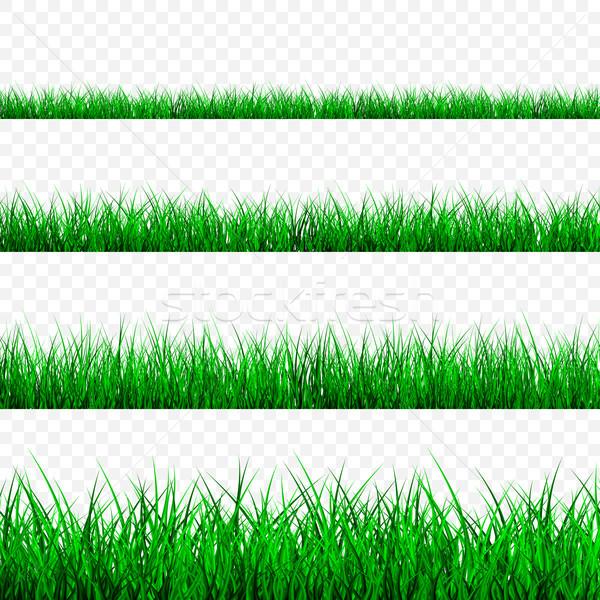 Green Grass Border Set, Vector Illustration Stock photo © olehsvetiukha