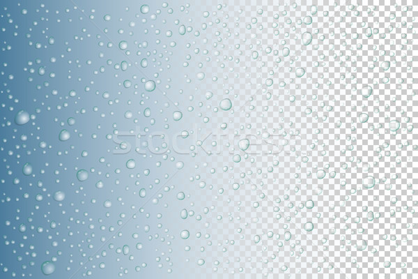 Vector Water drops on glass. Rain drops on transparent background Stock photo © olehsvetiukha