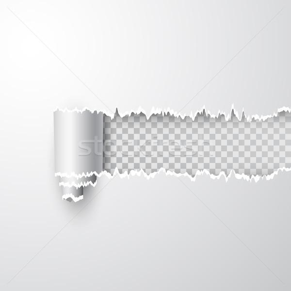 вектора Torn дыра лист белый бумаги Сток-фото © olehsvetiukha