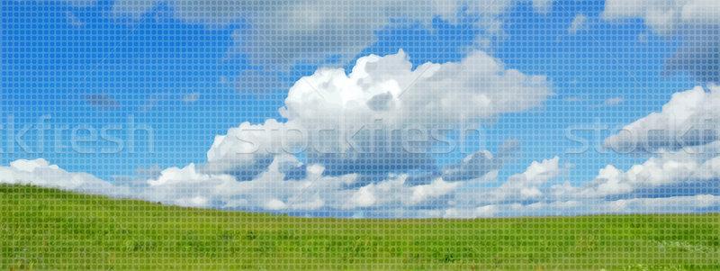 Beautiful summer landscape  Stock photo © OlgaDrozd