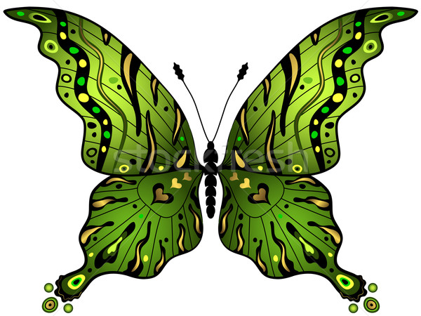 Green-gold butterfly Stock photo © OlgaDrozd