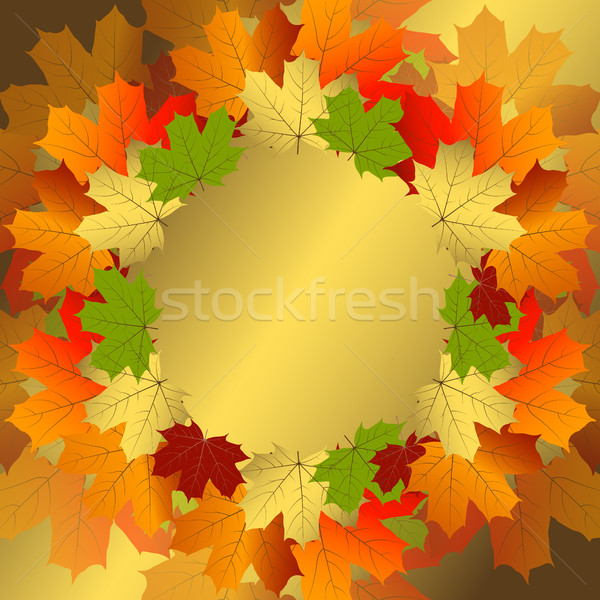 ősz dekoratív virágmintás keret színes áttetsző Stock fotó © OlgaDrozd