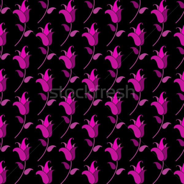 Küçük mor lale siyah arka plan Stok fotoğraf © OlgaDrozd