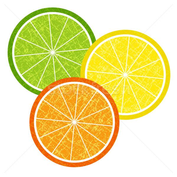 Colorido cítrico fatias conjunto laranja limão Foto stock © OlgaDrozd