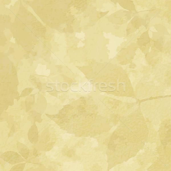 Papel luz folhas vetor eps 10 Foto stock © OlgaDrozd