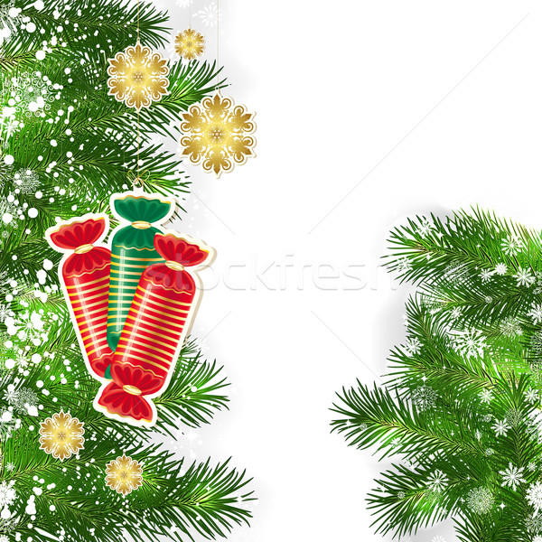 Weihnachten Dekor grünen Niederlassungen Weihnachtsbaum Baum Stock foto © OlgaYakovenko