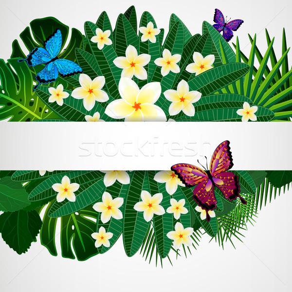 Floral design fleurs tropicales laisse papillons Photo stock © OlgaYakovenko