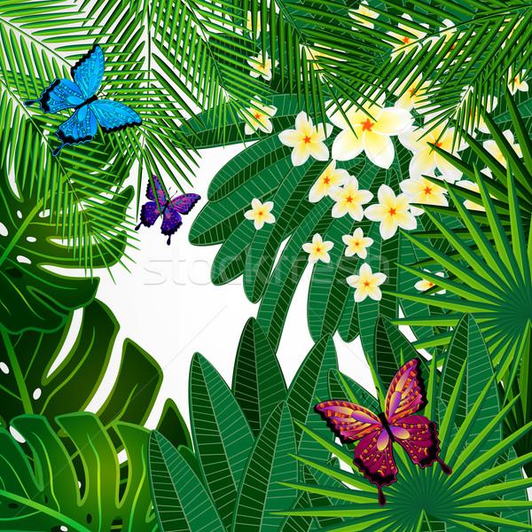 Dizayn çiçekler tropikal yaprakları kelebekler Stok fotoğraf © OlgaYakovenko