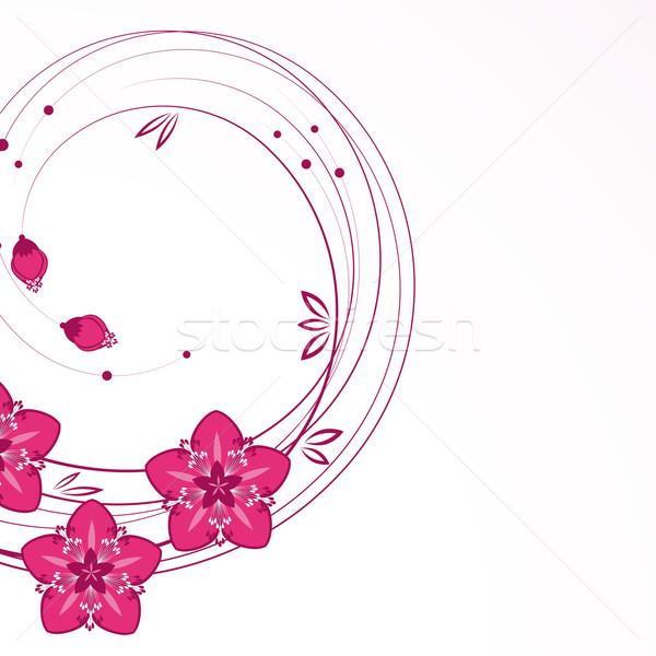Wdzięczny kwiatowy wektora kwiat wiosną trawy Zdjęcia stock © OlgaYakovenko