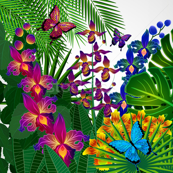 Floral design background. Tropical orchid flowers, leaves and bu Stock photo © OlgaYakovenko