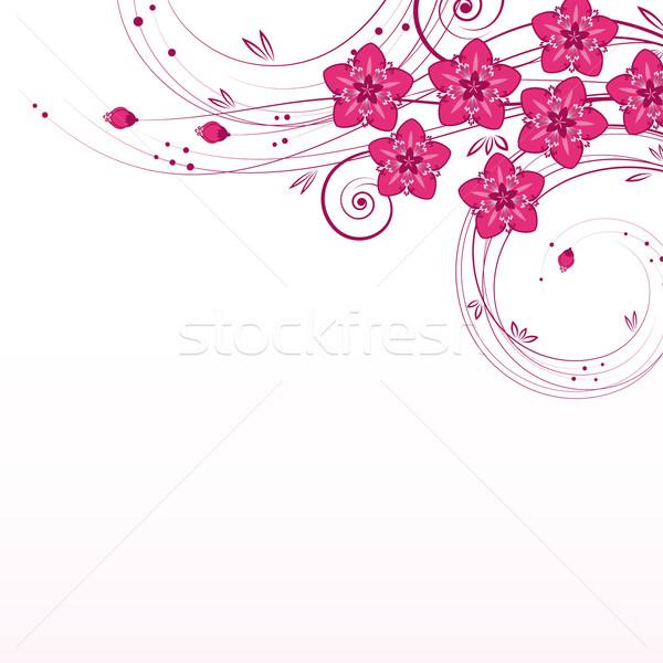 Gracieux floral vecteur printemps herbe résumé Photo stock © OlgaYakovenko