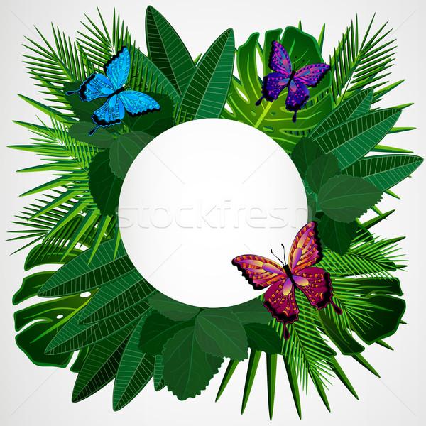 Tropicales laisse papillons floral design arbre Photo stock © OlgaYakovenko