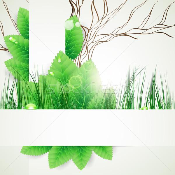 Stok fotoğraf: Eco · dizayn · çiçek · doku · yaprak · web