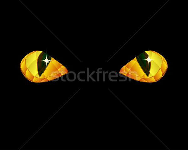 Shine yellow eyes on black background. Stock photo © OlgaYakovenko