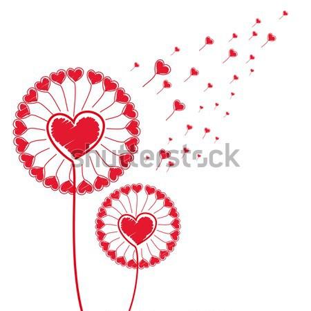 любви цветок иллюстрация природы красный жизни Сток-фото © OlgaYakovenko
