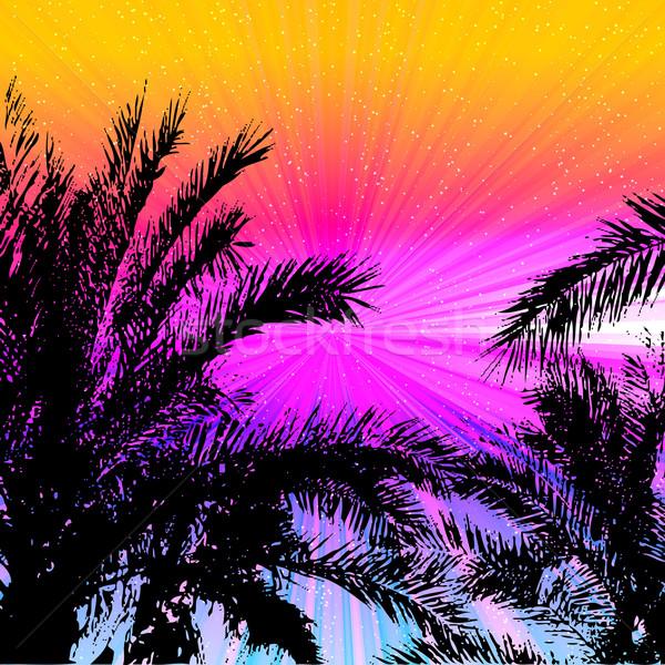 Palmy wygaśnięcia tropikalnych plaży lasu krajobraz Zdjęcia stock © OlgaYakovenko