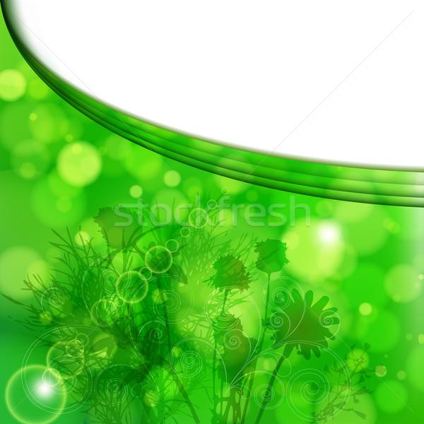цветочный лет цветок трава дизайна пространстве Сток-фото © OlgaYakovenko