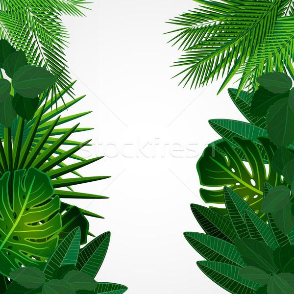 тропические листьев цветочный дизайна дерево фон Сток-фото © OlgaYakovenko